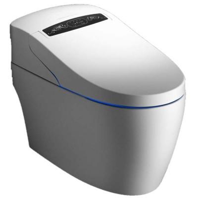 Le WC monobloc Luxe Platinium 2