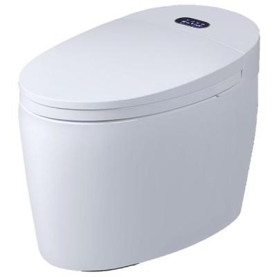 Le WC monobloc Luxe Diamond