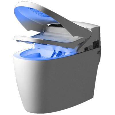 Le WC monobloc Luxe Platinium 2+